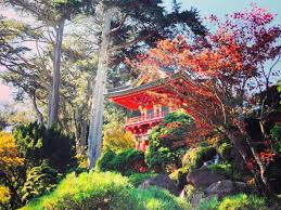 Places You Have To Visit In The Us Curbed San Francisco Pocket Guide Fall 2017
