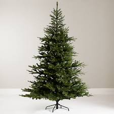 buy lewis shangri la 7ft babylon pine tree at