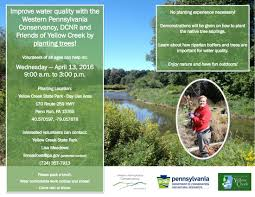 native plants pennsylvania volunteers u2013 tree planting u2013 april 13 friends of yellow creek