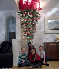 Christmas Tree Stop - cardiff family hang christmas tree from the ceiling to stop cat
