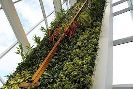 siege social levis le mur végétal du nouvel édifice du mouvement desjardins voir