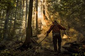 Wild Fires In Canada Now by On The Front Lines With Firefighters Battling B C U0027s Wildfires
