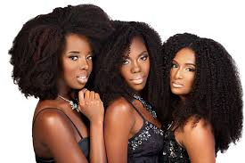 best hair extension brands 2015 5 best clip in extension brands for natural hair tgin