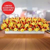 fruit delights edible arrangements fruit baskets bouquets chocolate covered