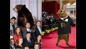 Leonardo Dicaprio No Oscar Meme - premios oscar oso de the revenant tambi礬n tiene sus memes