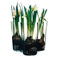 cool vases alvar aalto vas klar 160 mm alvar aalto iittala royaldesign