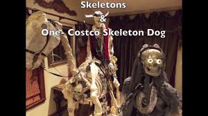 horse skeleton halloween home depot skeleton horse and rider animated for halloween youtube