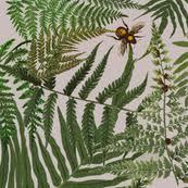 ferns fabric wallpaper u0026 gift wrap spoonflower