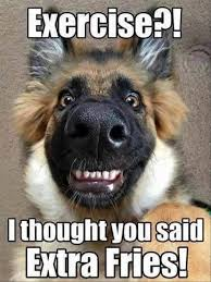 Confused Dog Meme - hungry dogs