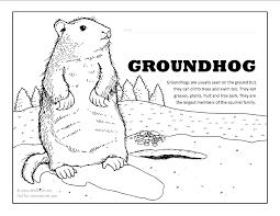 Groundhog Coloring Page Groundhog Color Page