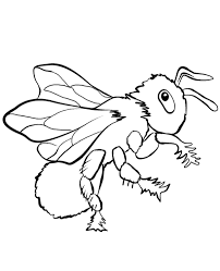 insects warms bugs coloring pages children spider snail