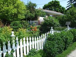 Outdoor Fence Decor Ideas by Backyard Landscape Ideas With Natural Touch For Modern Home