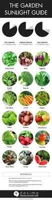 Fall Vegetable Garden Ideas Vegetable Garden Sun Requirements Noharm Club