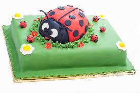 ladybug birthday cake ladybug birthday cake cake stock photo image of girl 30507818