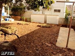 no dig garden permablitz hi