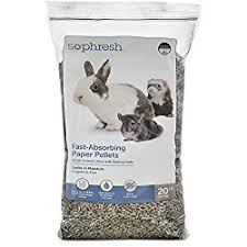 Best Bedding For Rats Best Bedding For Rats From Great Options To Unsafe Options