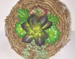 Hanging Succulent Planter by Hanging Succulents Etsy