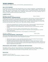 sales assistant resume real estate sales resume ideas of sle real estate resume