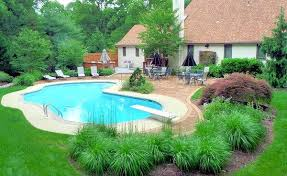 Patio Around Tree Trees Around Pools Texas Privacy Trees Around Pool Trees Around