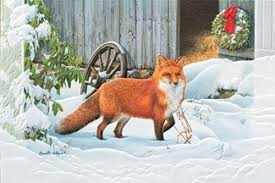 pumpernickel press wildlife cards frosty walk fox boxed christmas cards
