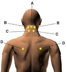 10 best acupressure points to treat pains and aches