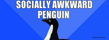 Socially Awkward Penguin Memes - socially awkward penguin facebook covers socially awkward penguin