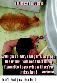 Cat Lover Meme - true cat lovers will go to any lengths to help their fur babies