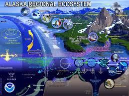 Gulf Of Alaska Map Alaska