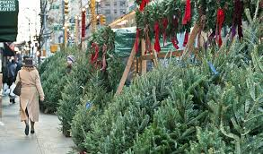 real christmas trees for sale christmas tree onomics the brian lehrer show wnyc