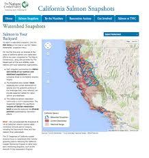 google snapshots salmon snapshots