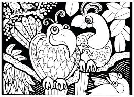 coloring pages adults quotes funny birds gallery