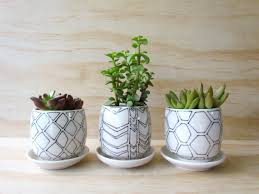 succulent planters set of three small black and white geometric planters modern