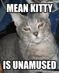 Mean Cat Memes - mean kitty
