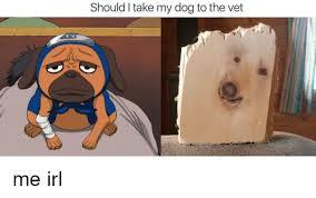Dog At Vet Meme - should i take my dog to the vet irl meme on me me