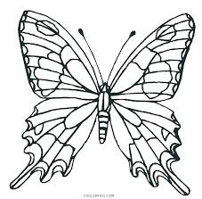 detailed butterfly coloring pages for adults butterfly printable coloring pages coloring pages for butterflies