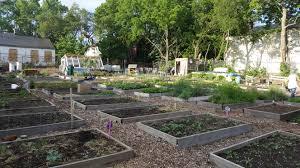 Type Of Wood For Raised Garden Food Access Updates U2013 Walnut Hills Redevelopment Foundation