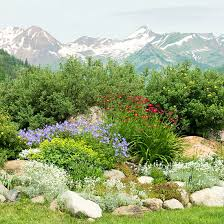 rocks in garden design rock garden design ideas