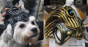 Anubis Halloween Costume Anubis Dog God Halloween U2013 Organic Armor