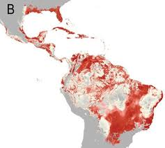 map of usa zika zika world map climate suitability zika miami