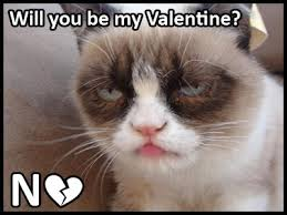 Be My Valentine Meme - will you be my valentine cat quotes wishes for valentine s week