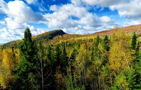 fall color getaway caribou highlands
