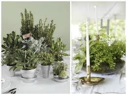 Reception Centerpieces Potted Plant Wedding Reception Flowers Mywedding