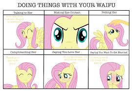 Mlp Fluttershy Meme - doing things with your waifu fluttershy by paulysentry my little