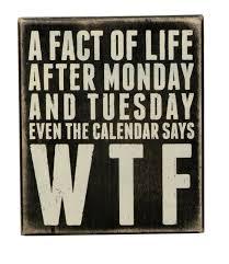 fact of life box sign calendar wood sit hang home decor funny