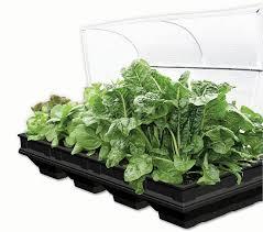 vegepod container gardens fertile fields ltd