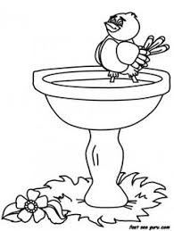 detailed animal coloring pages parrot coloring pages color