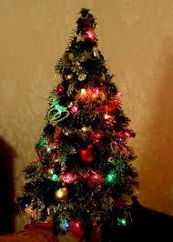 free images atmosphere lighting tree