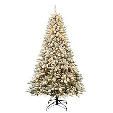colorado flocked pine with 600 clear lights