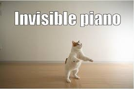 Invisible Cat Memes - invisible piano cat meme cat planet cat planet
