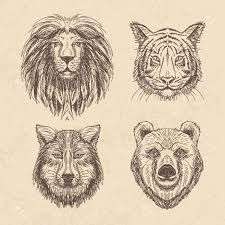 vector set of vintage illustration with wolf